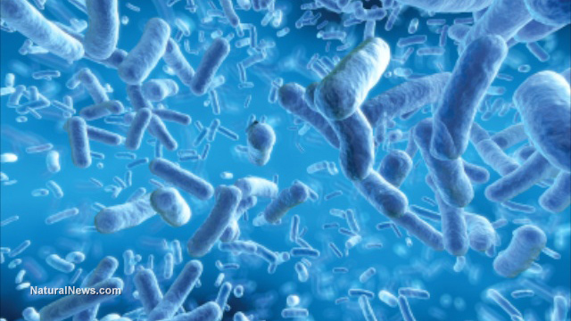 Emerging superbug kills woman: Infection resistant to 26 antibiotics