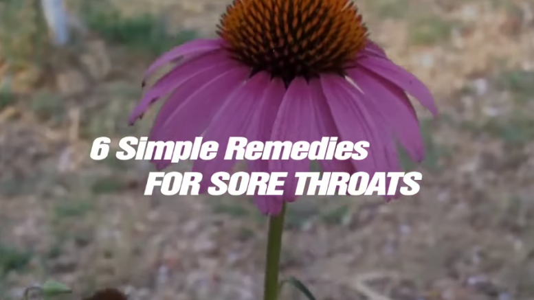 6 Simple Remedies for Sore Throats (Video)